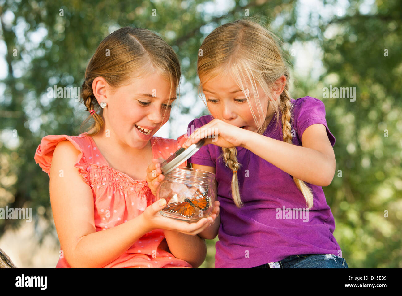 USA, Utah, Lehi, Two girls (4-5, 6-7) fascinated by butterfly in jar - Stock Image