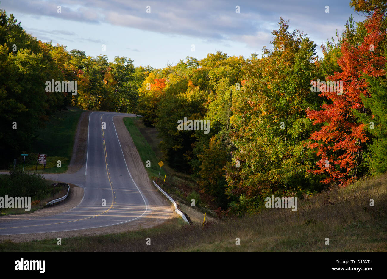 Autumn leaves on trees along Highway 51 in the Northwoods of Wisconsin - Stock Image