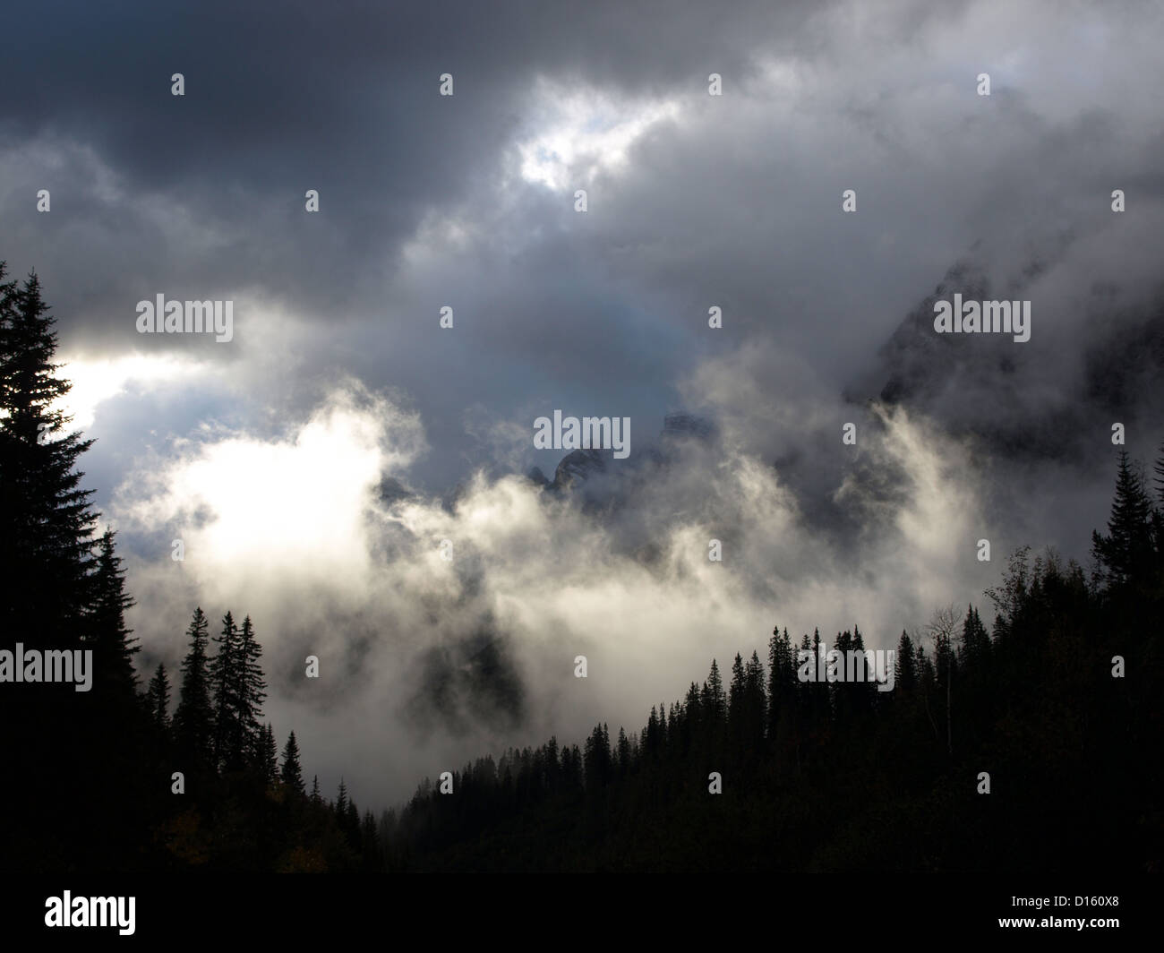 Silhouette of trees in Karwendel mountains - Stock Image