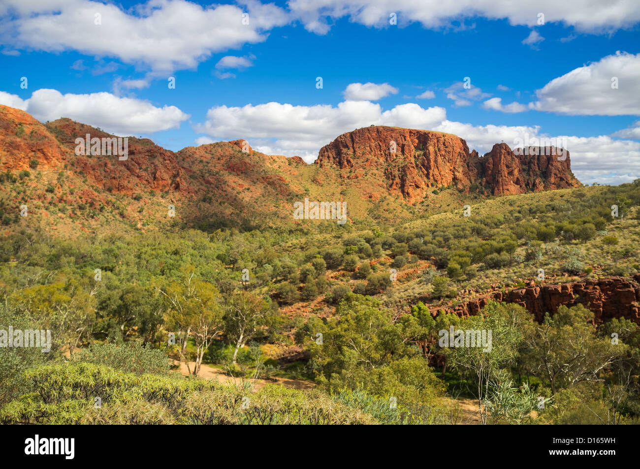 Rugged red cliffs at Trephina Gorge, East MacDonnell Ranges, Northern Territory in the Red Centre of Central Australia - Stock Image