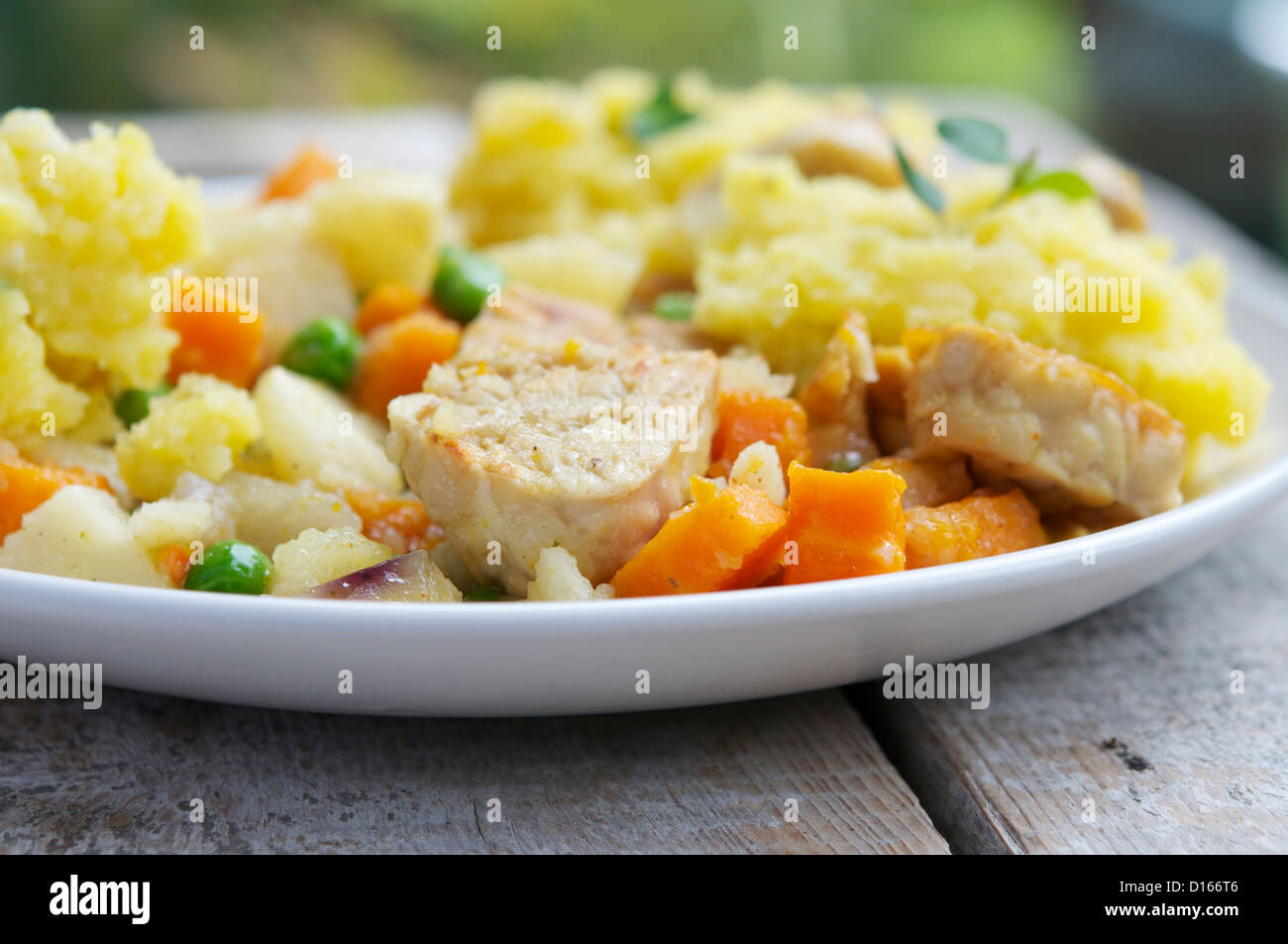 Tempeh stew with mixed vegetables and gartlic mashed potatoes. Stock Photo