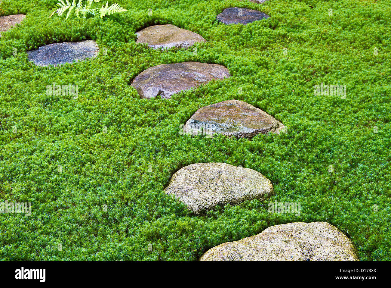 Stepping Stone For Garden Stepping stones garden stock photos stepping stones garden stock stepping stones in traditional japanese garden takayama gifu prefecture stock image workwithnaturefo