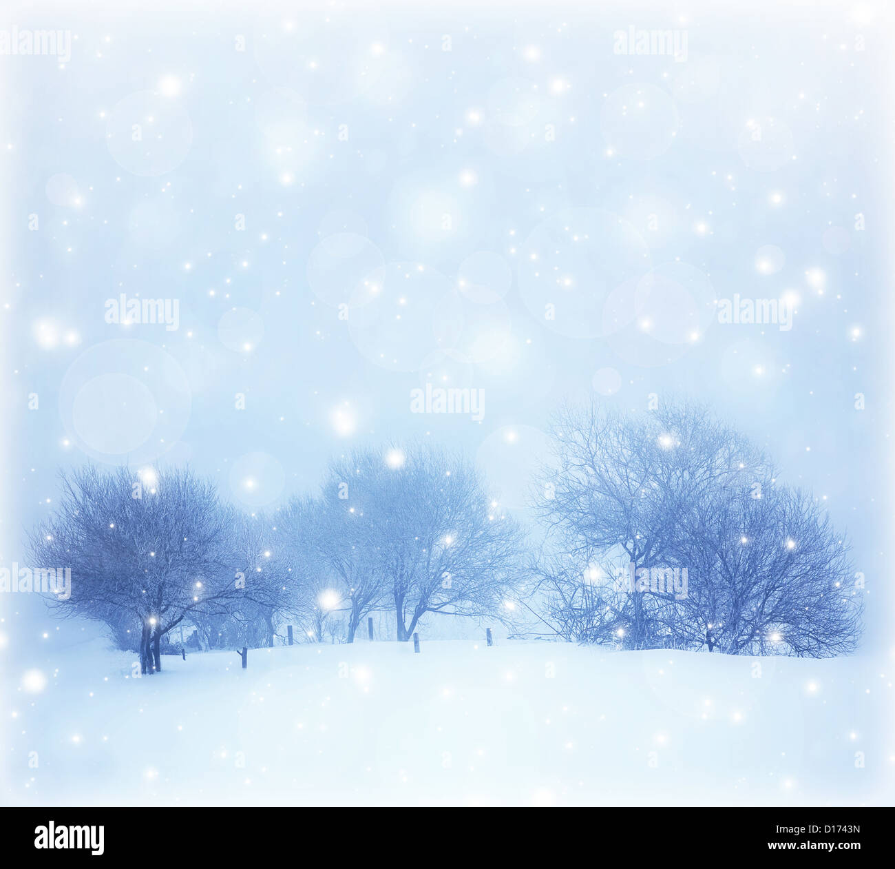 Photo of beautiful snowy landscape, Christmas postcard, snow cover on the trees, seasonal snowfall, snowstorm in - Stock Image