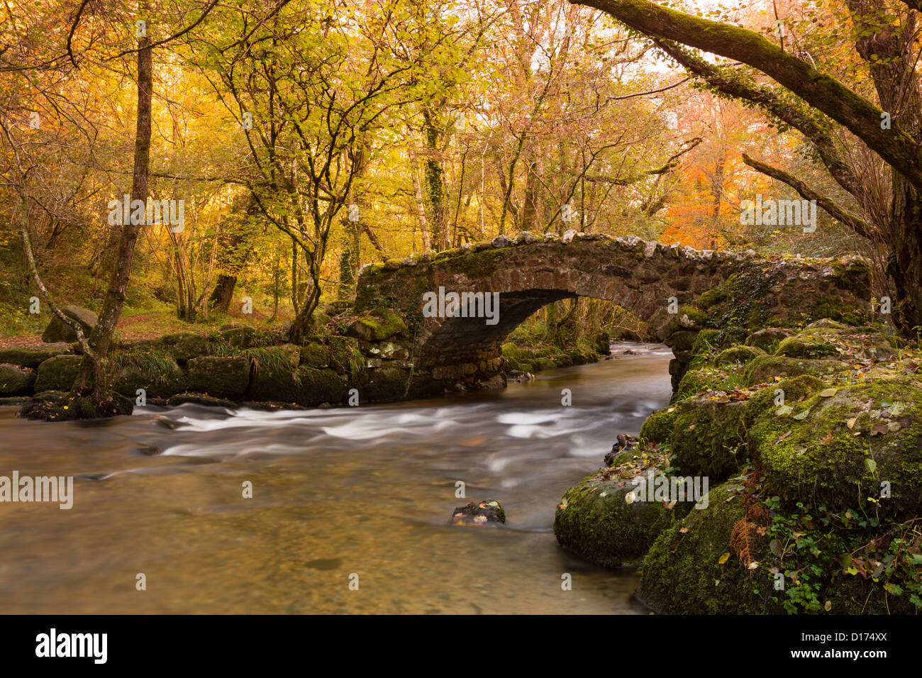 River Bovey flowing under Hisley Bridge in autumn Dartmoor National Park Devon Uk - Stock Image