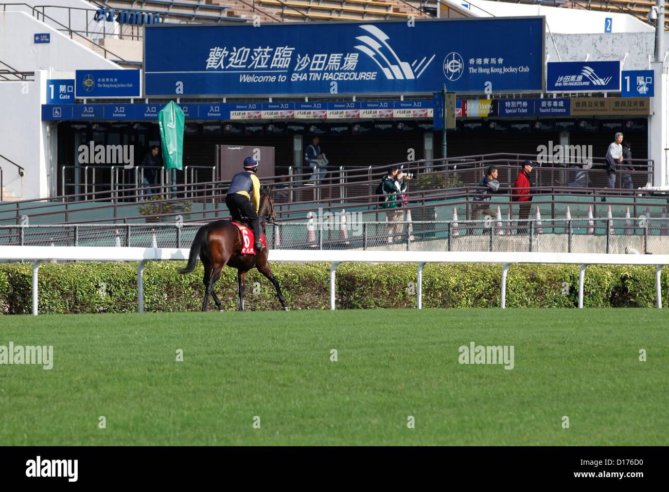 06.12.2012 - Hongkong; Feuerblitz, ridden by Sandor Hegedues during the morning track work. Credit: Lajos-Eric Balogh/turfstock.com - Stock Image