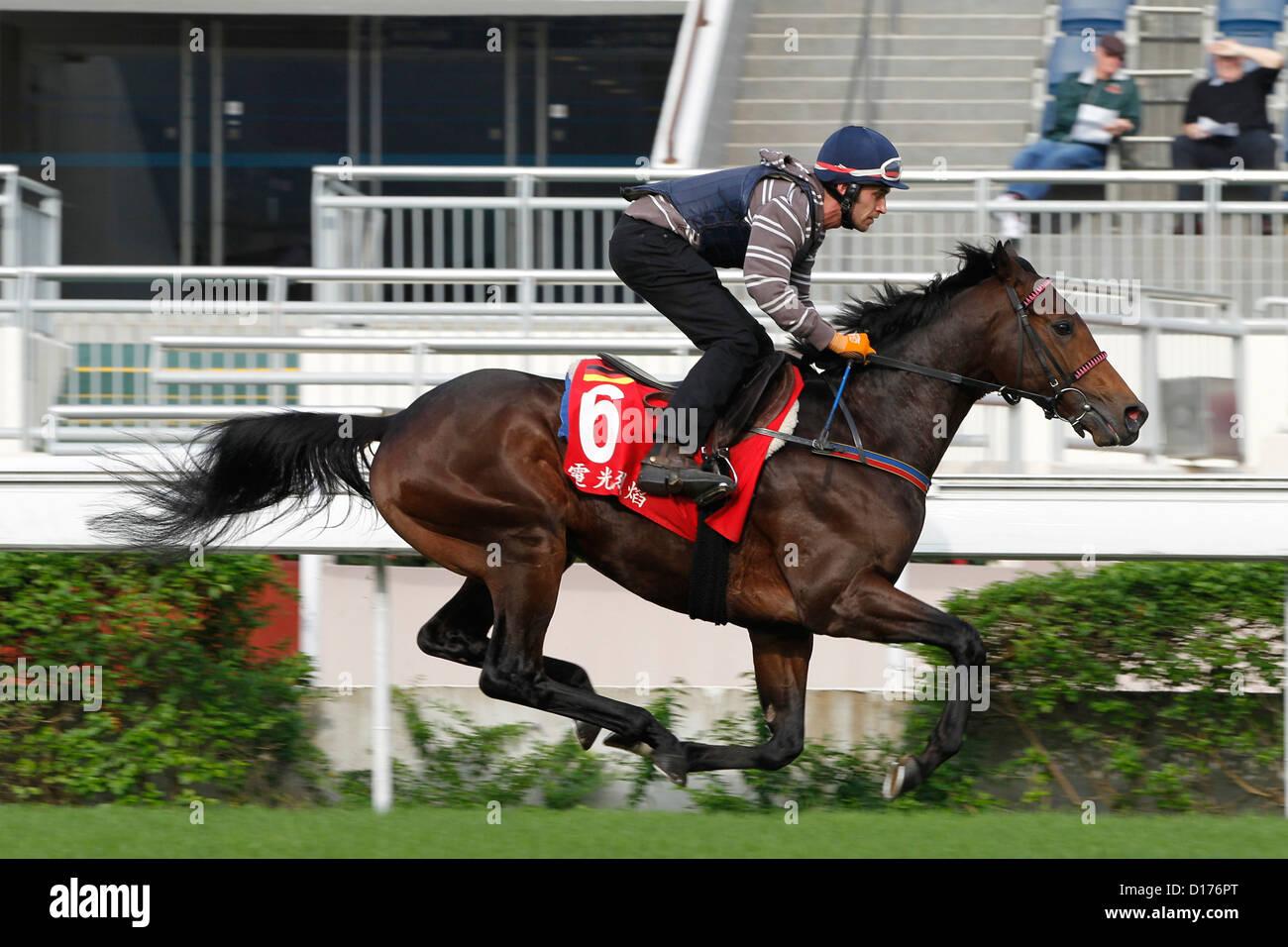 07.12.2012 - Hongkong; Feuerblitz, ridden by Sandor Hegedues during the morning track work. Credit: Lajos-Eric Balogh/turfstock.com - Stock Image