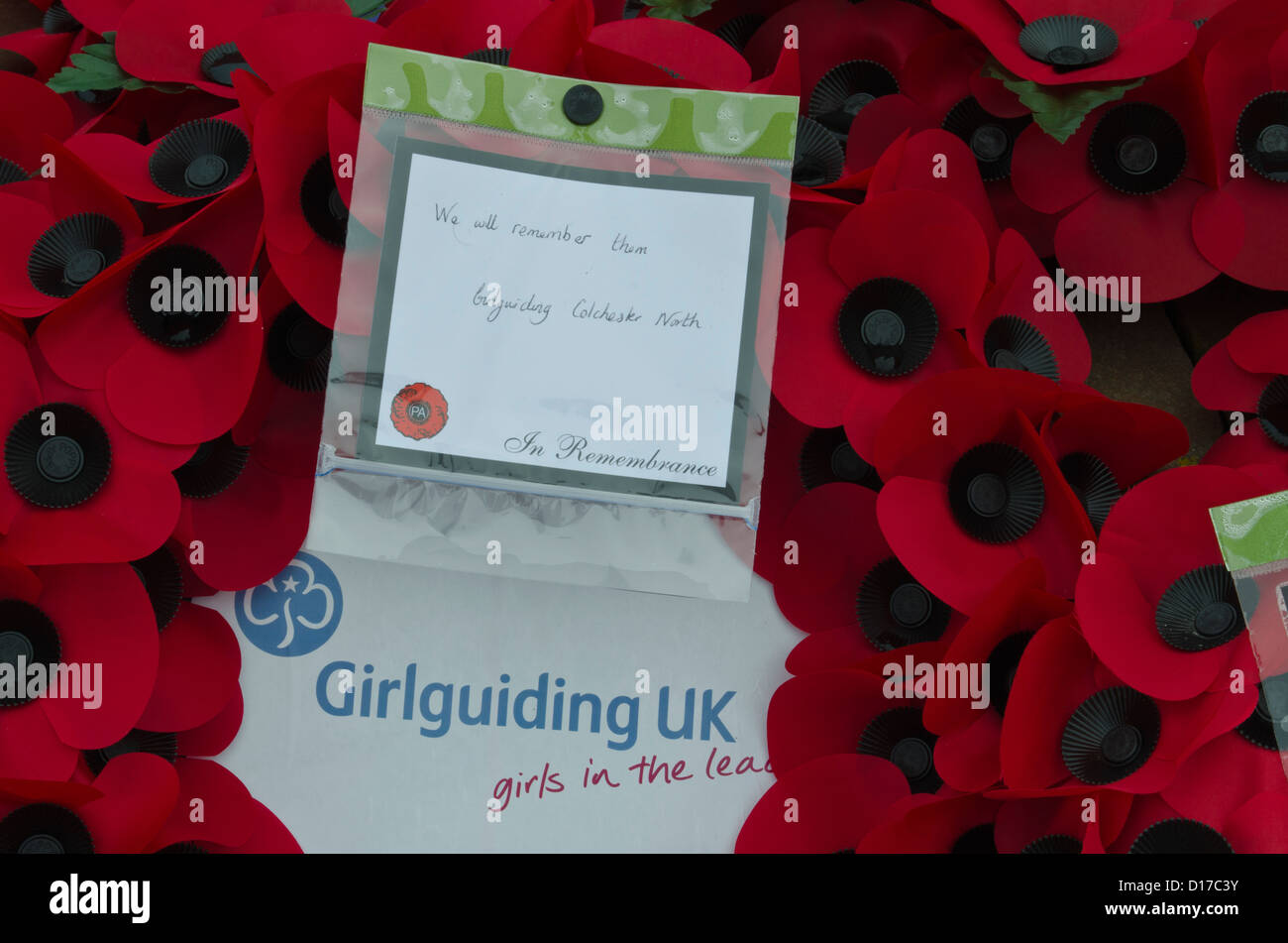Poppy wreath from the girl guides UK - Stock Image