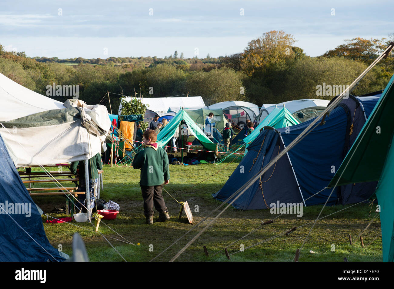 Scouts at a camp in Ceredigion, West Wales, UK - Stock Image