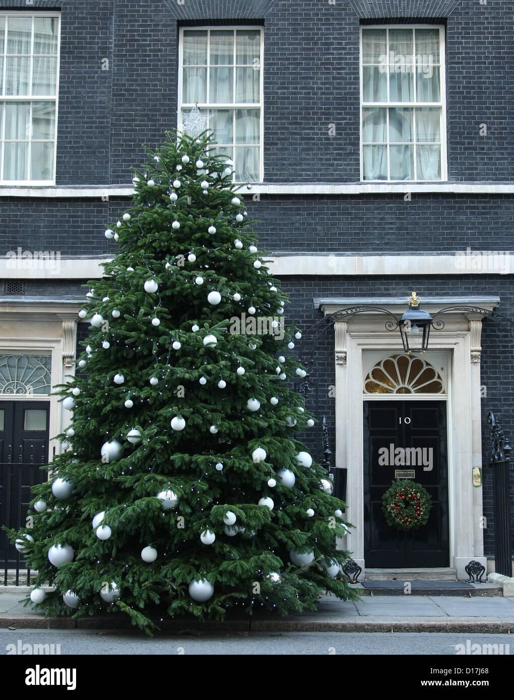 2aa7b56127ef CHRISTMAS TREE OUTSIDE NUMBER 10 DOWNING STREET CHRISTMAS TREE LONDON  ENGLAND UK 10 December 2012 -