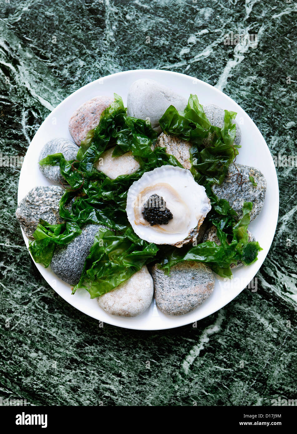 Plate of oysters with caviar and seaweed Stock Photo