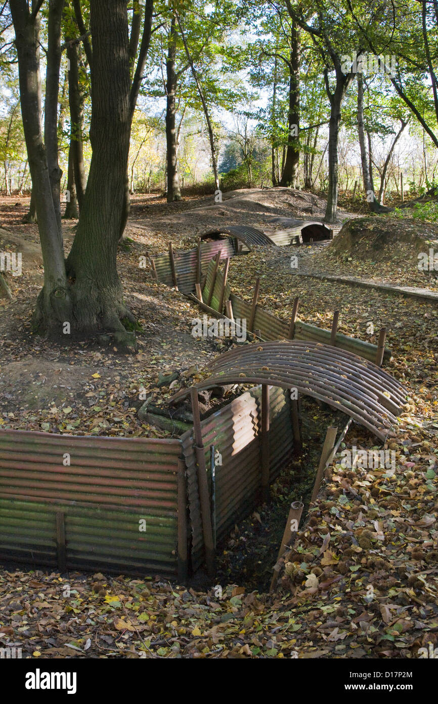 WW1 trenches from First World War One frontline at the Sanctuary Wood Museum Hill 62 at Zillebeke, West Flanders, - Stock Image