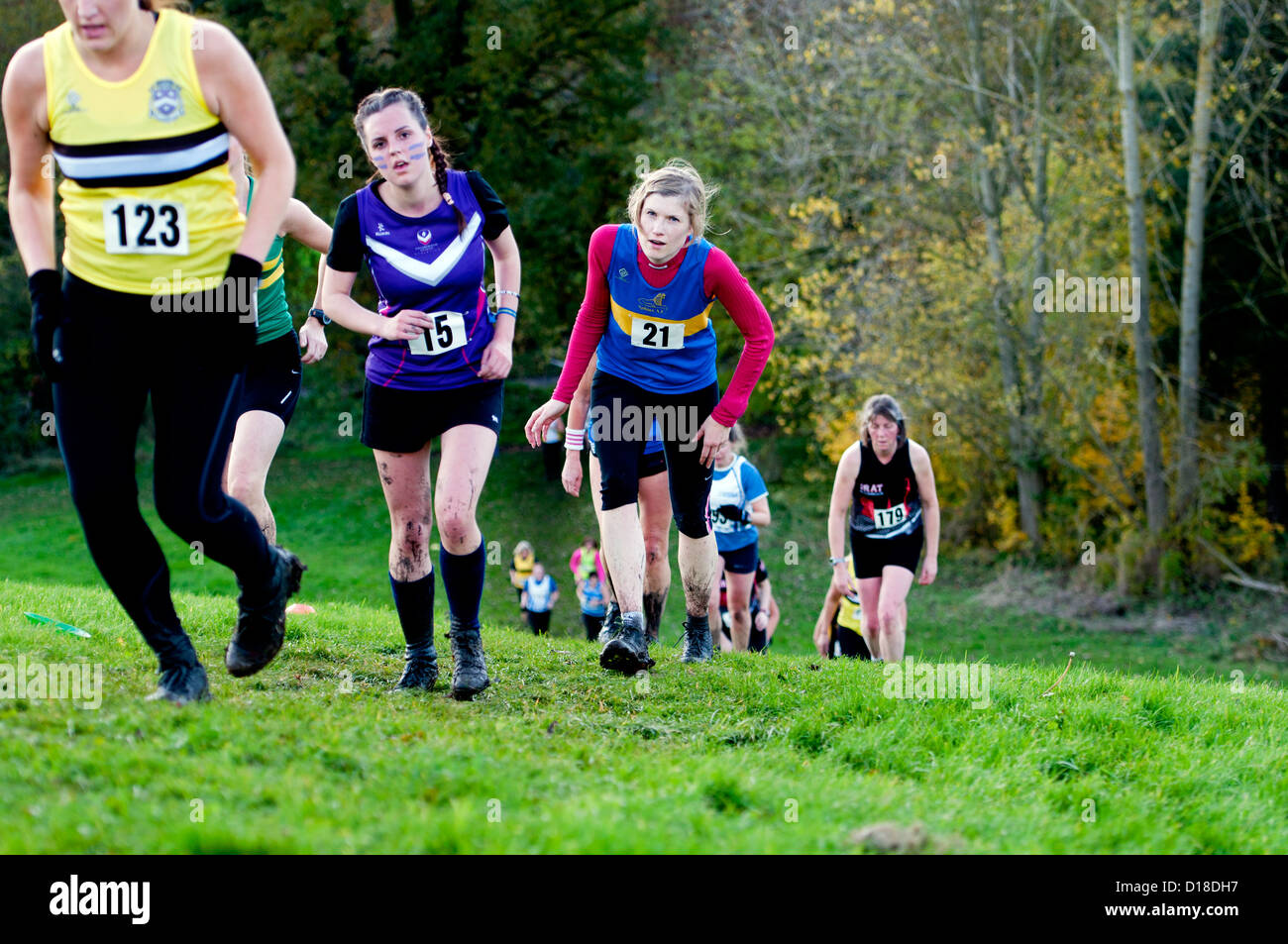 how to train for a cross country race