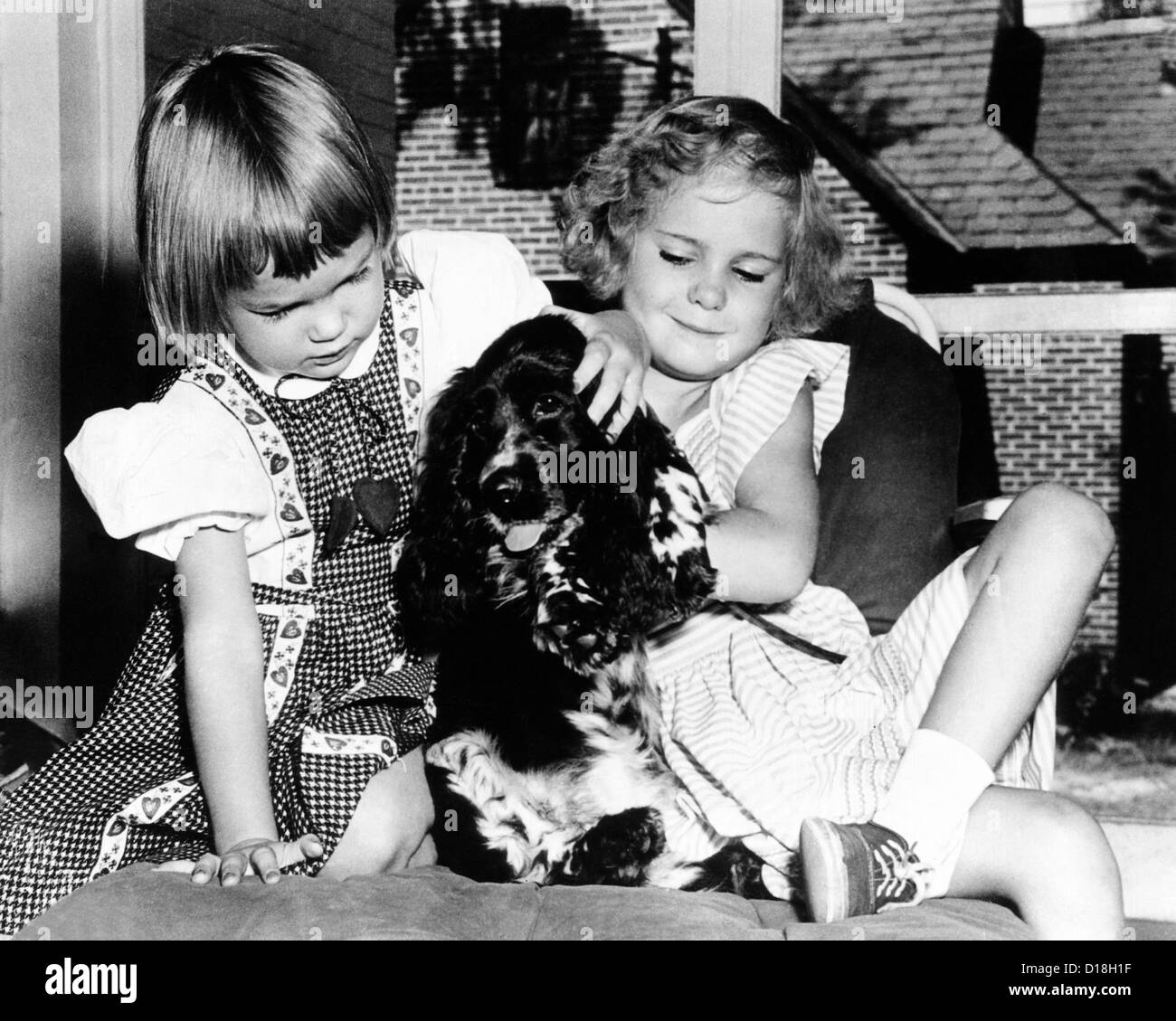 Julie and Tricia Nixon playing with their cocker spaniel, Checkers. The dog was mentioned by Richard Nixon in his - Stock Image
