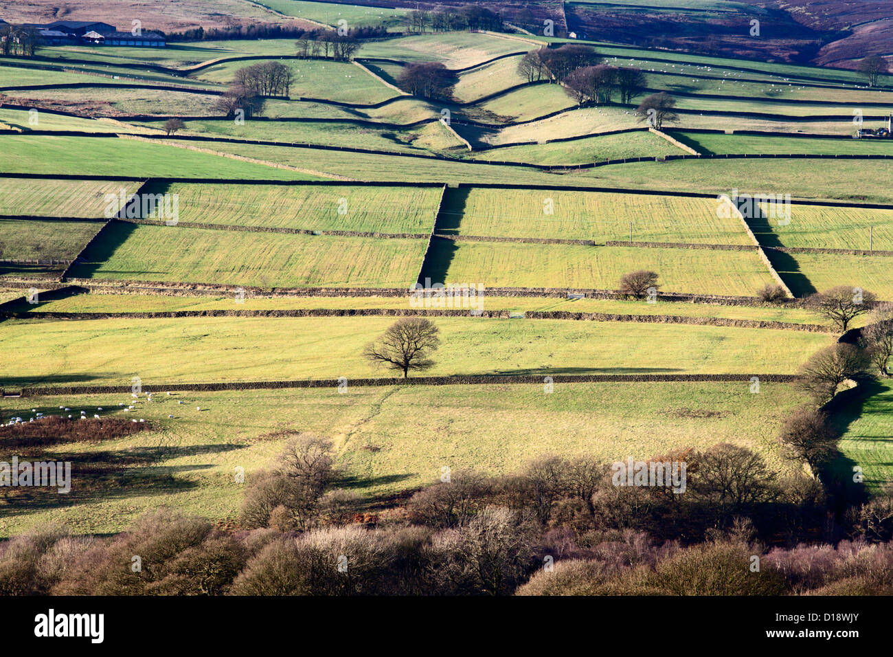 Farmland in Nidderdale from Brimham Rocks near Summerbridge North Yorkshire England - Stock Image