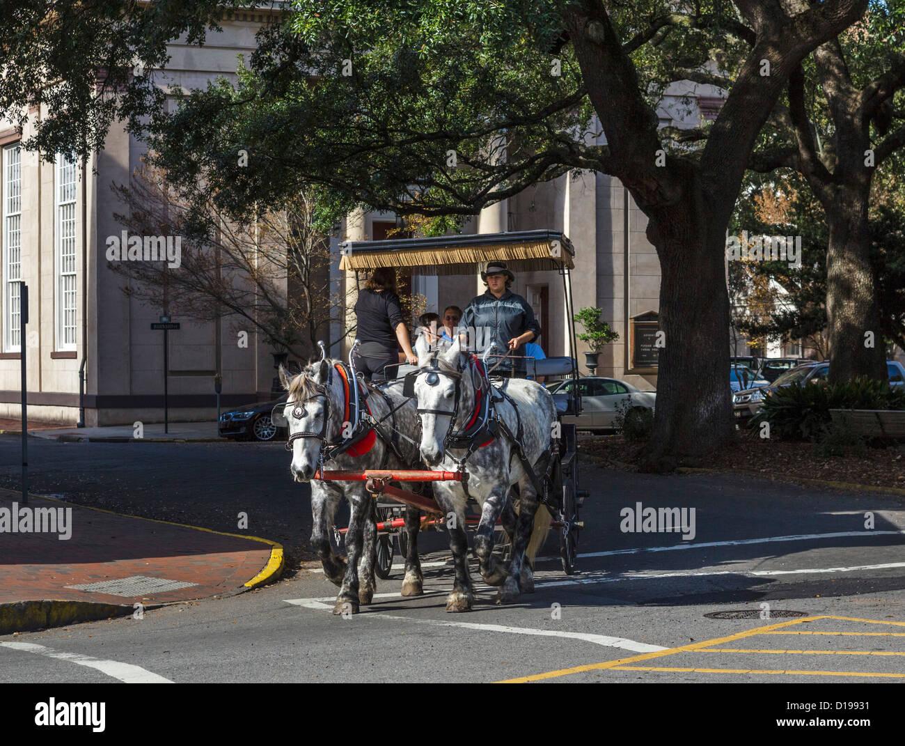 Horse drawn carriage ride in historic dowtown Savannah, Georgia, USA - Stock Image