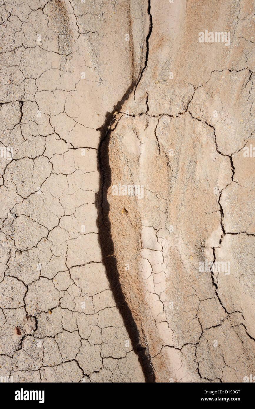 Parched earth - Arizona, USA - Stock Image