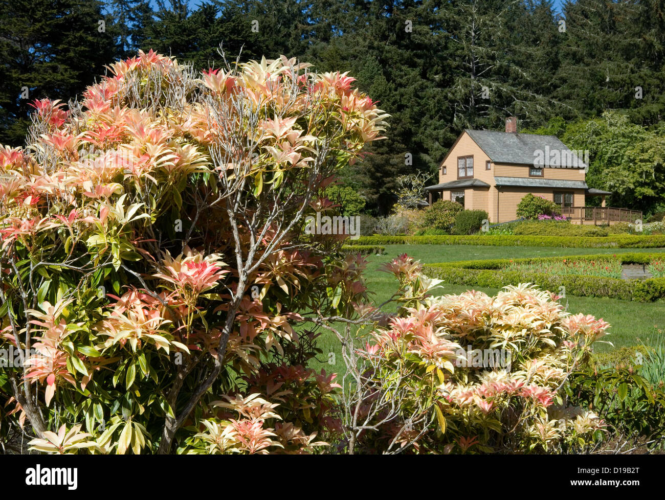 OR00654-00...OREGON - Garden house and formal gardens at Shore Acres State Park on the Pacific Coast near Charleston. - Stock Image
