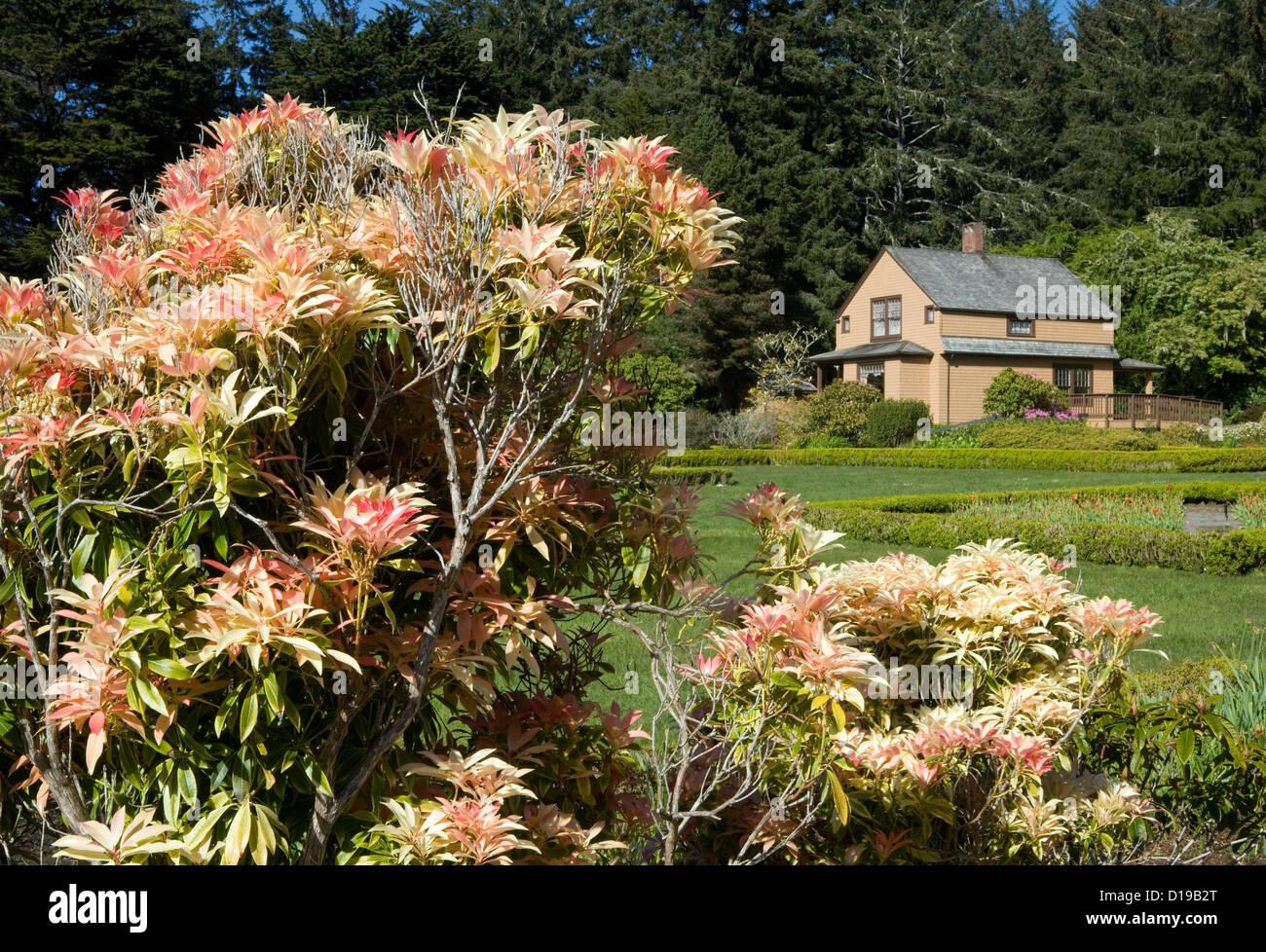Oregon Garden Stock Photos & Oregon Garden Stock Images - Alamy