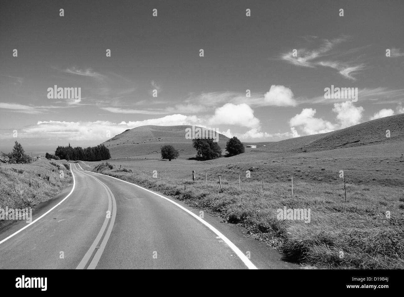 Hawaii, Big Island, Waimea Ranchland, Road Curving Through Pastures (Black And White Photograph). - Stock Image