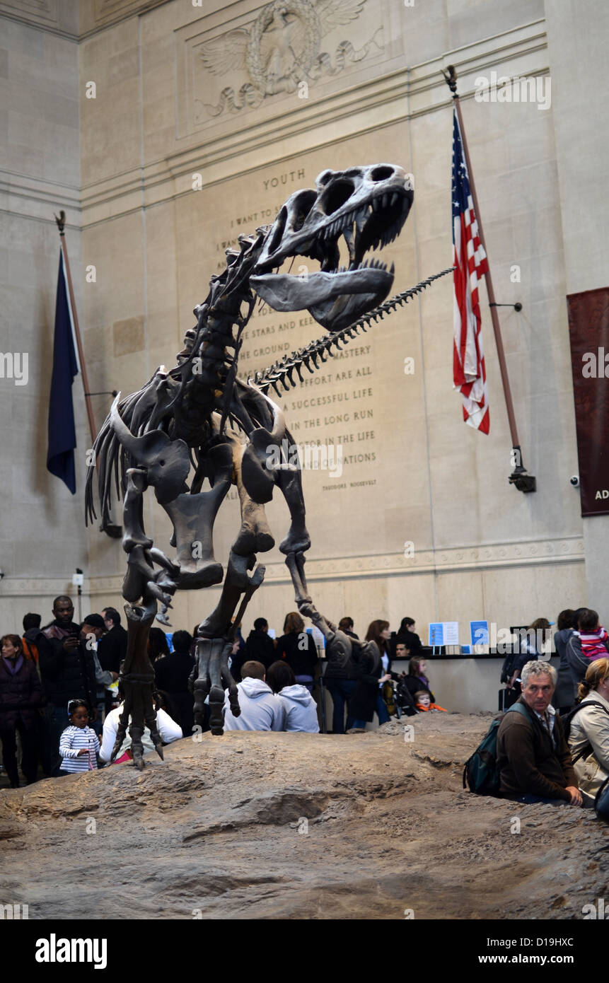 American Museum of Natural History, New York - Stock Image