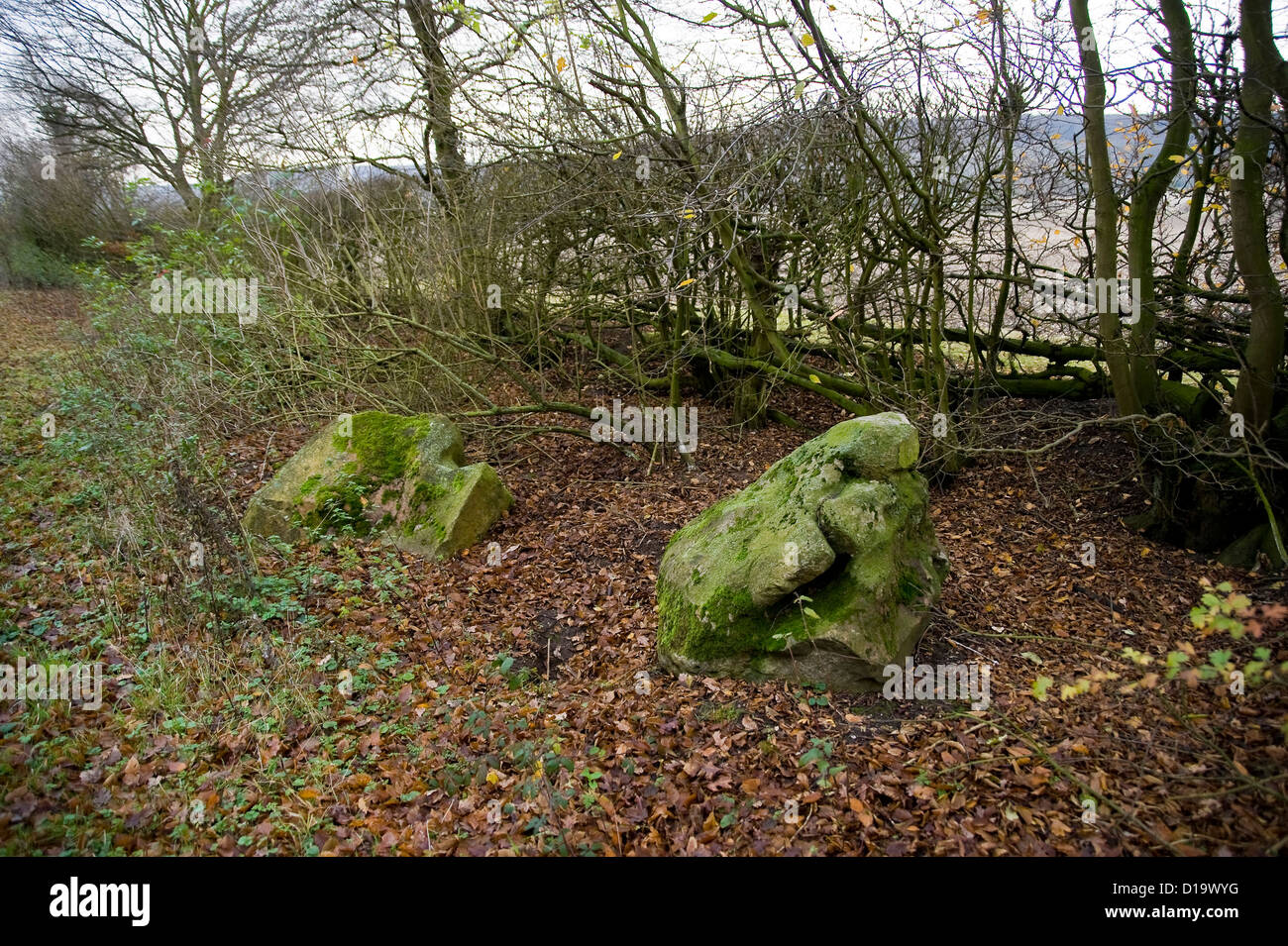 Large sarcen stones on the side of The Ridgeway National Trail near Chinnor, Buckinghamshire, UK - Stock Image
