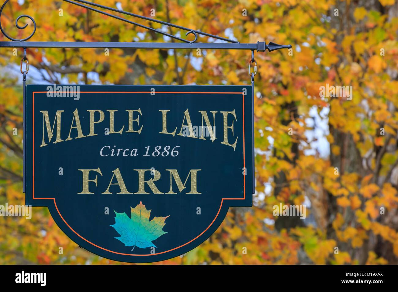 Maple Lane Farm, Vermont - Stock Image