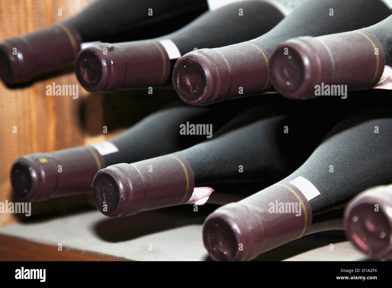 Wine bottles in a wine cellar, shot close up - Stock Image