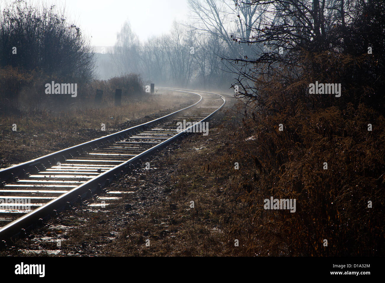 rails in the fog - Stock Image