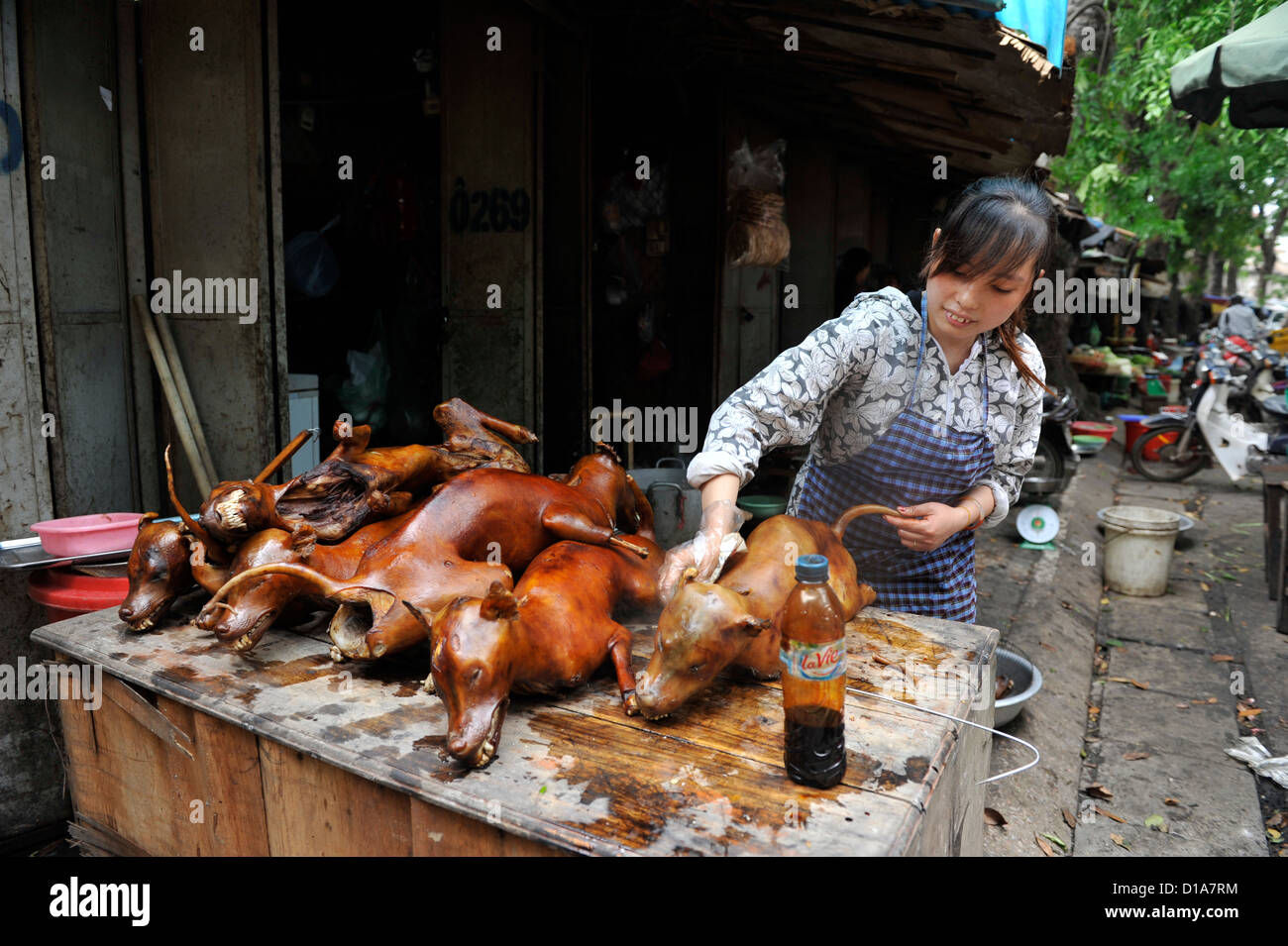 Cooked Dog Stock Photos Amp Cooked Dog Stock Images Alamy