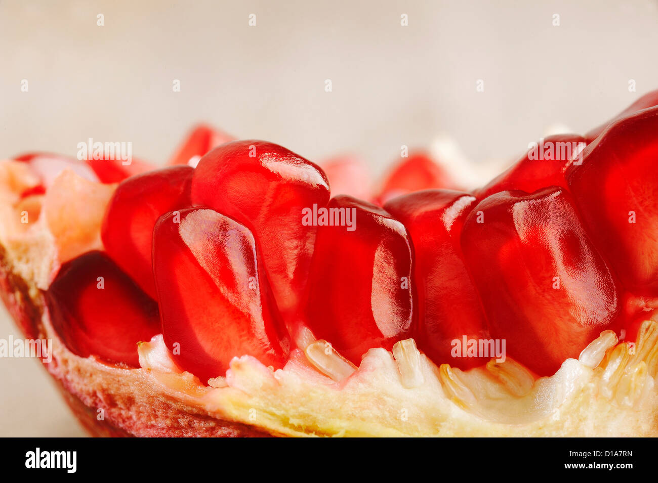 Pomegranate fruits - Stock Image