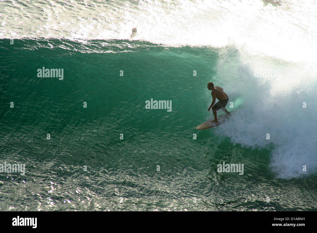 Surfer riding a huge wave, Maui, Hawaii Stock Photo