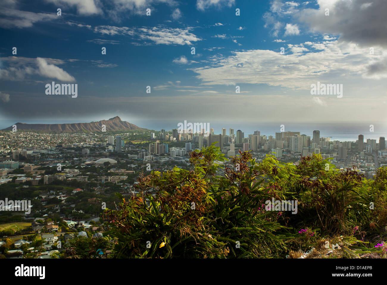 Honolulu Hawaii Oahu - Stock Image