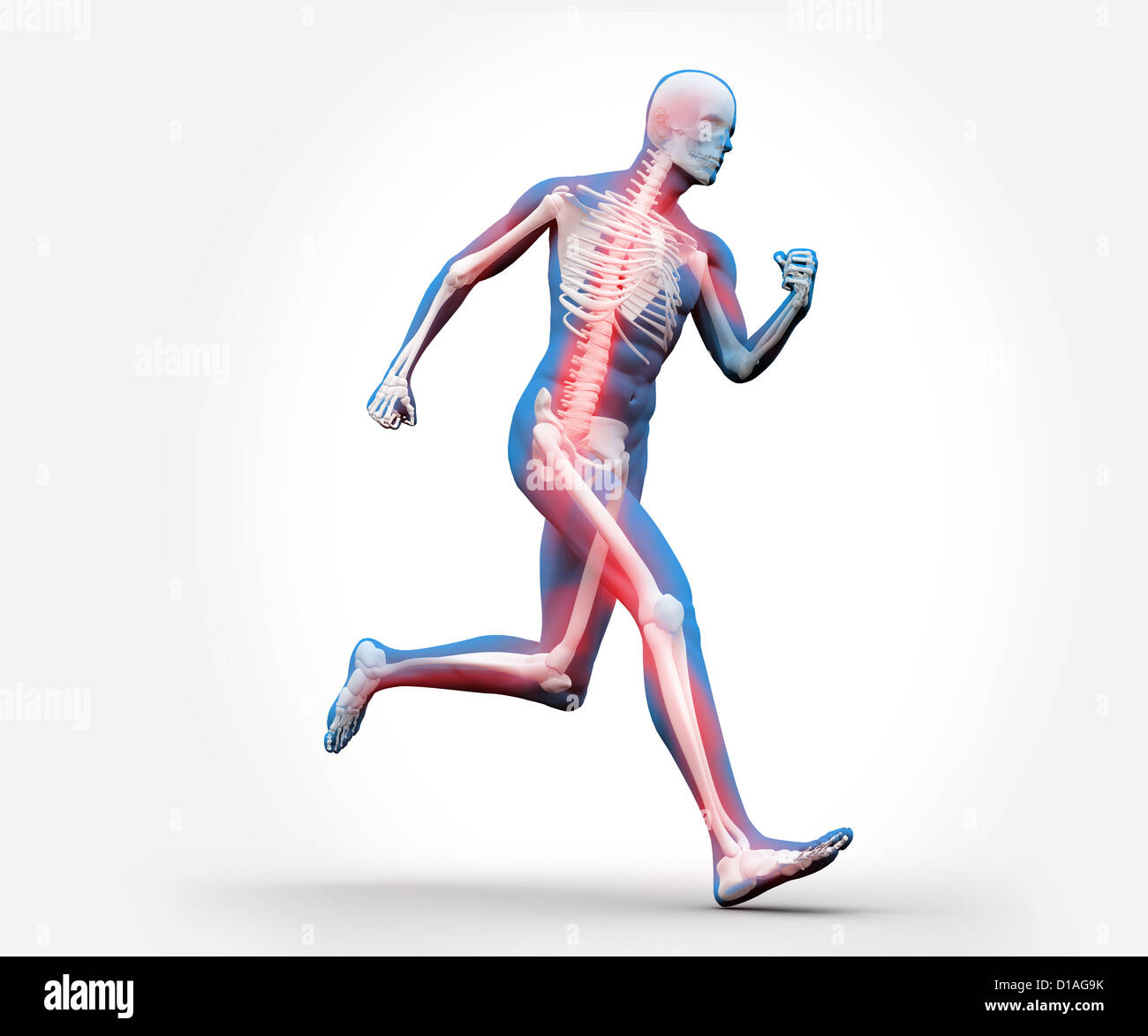 Blue and red digital skeleton running Stock Photo
