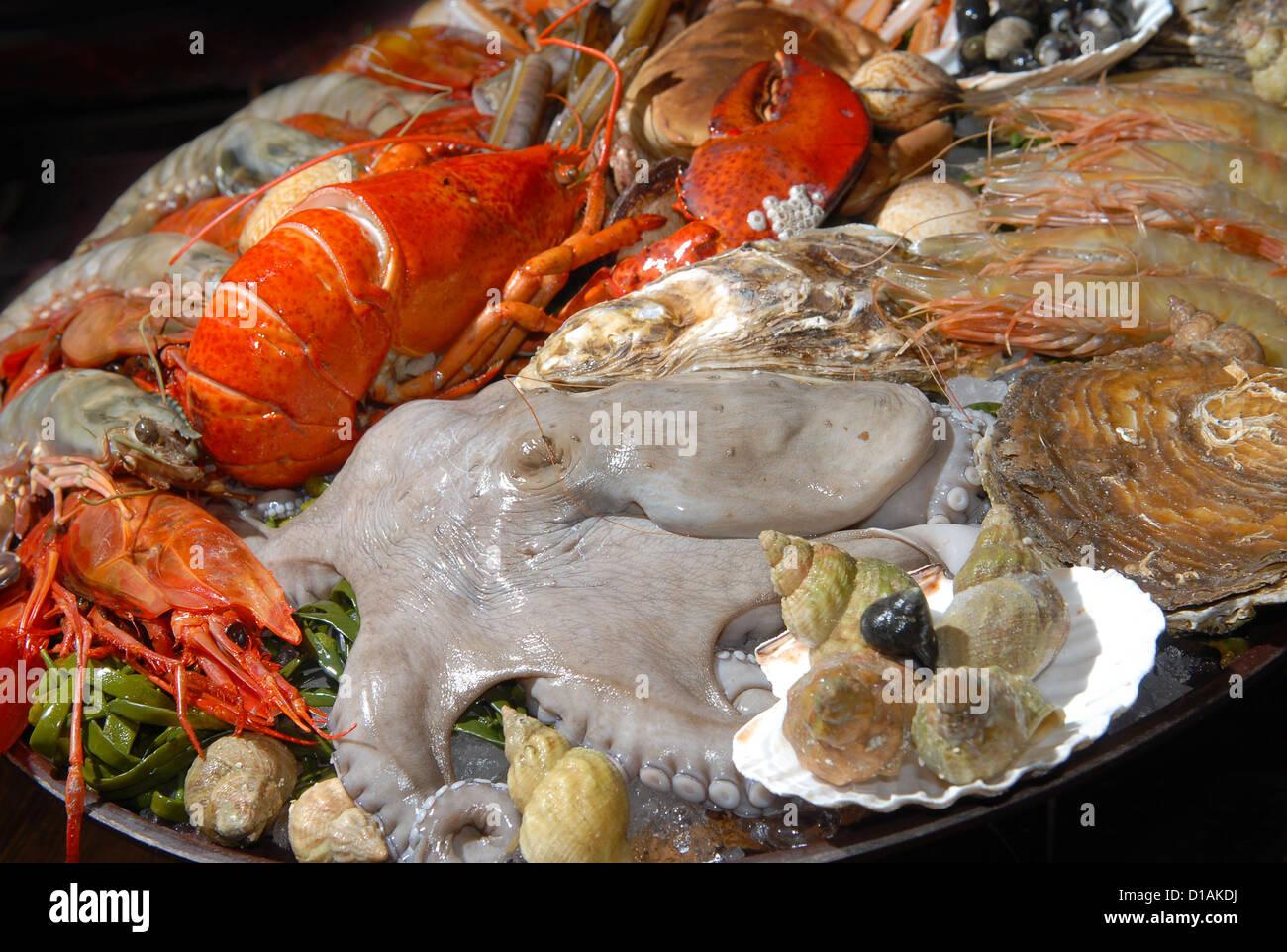 Fresh seafood on the big plate - Stock Image