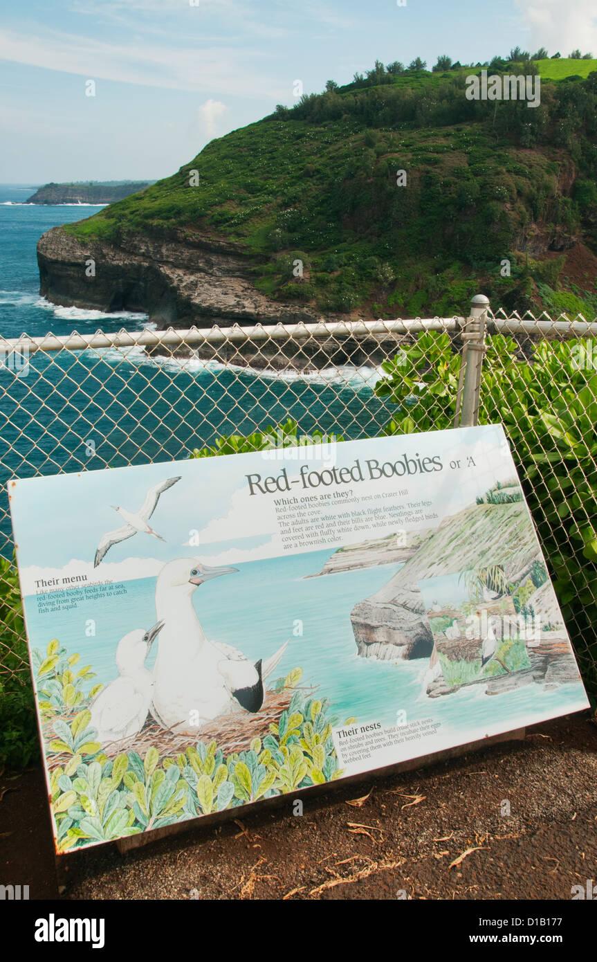Red-footed Booby wildlife sign, Kilauea Point Lighthouse natural area, Kauai Island, Hawaii - Stock Image