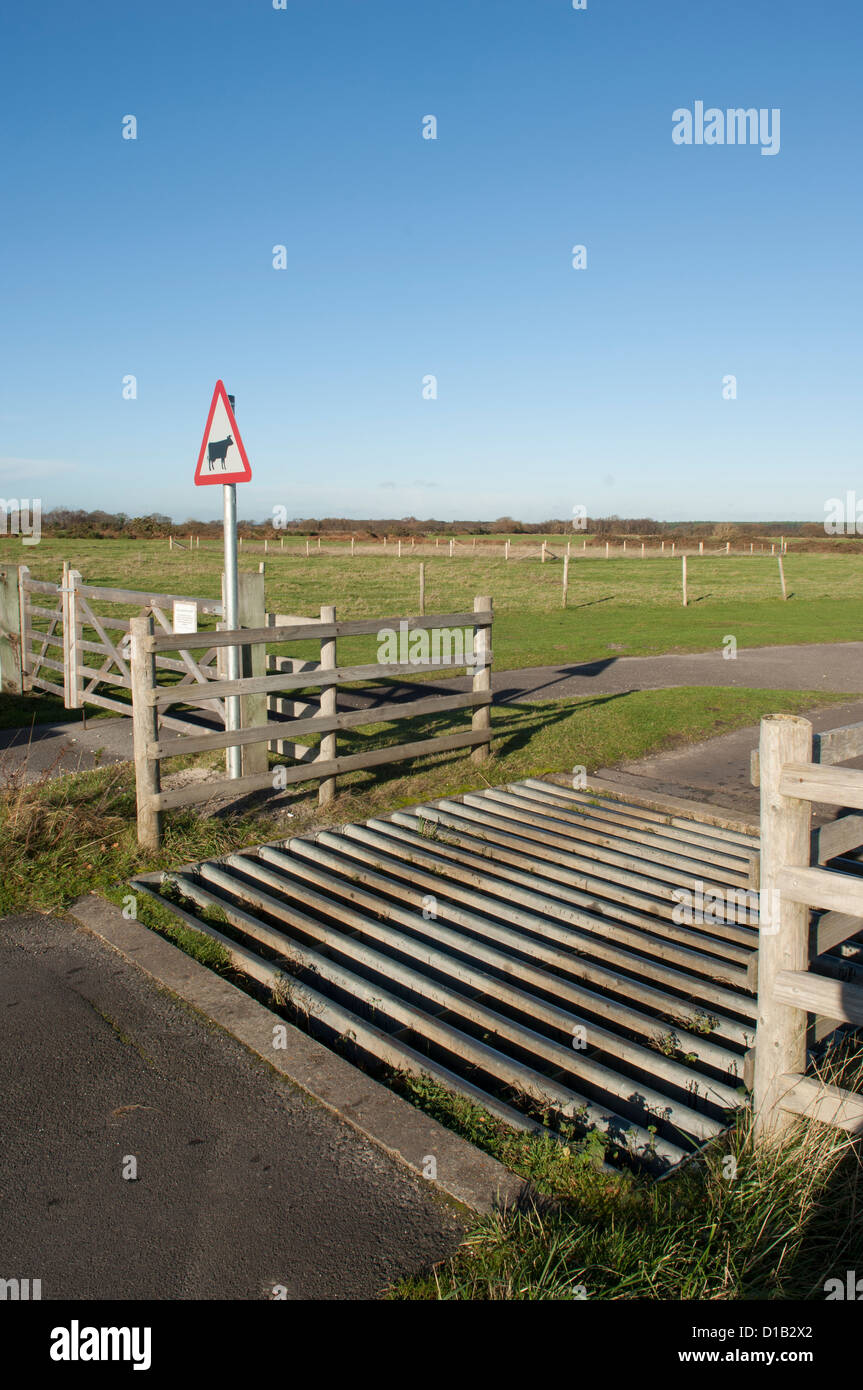 Britiish Rural road cattle grid and road sign - Stock Image