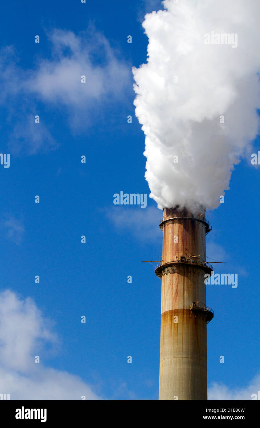Smoke and steam emission at the TECO Tampa Electric Big Bend Power Station located in Apollo Beach, Florida, USA. - Stock Image
