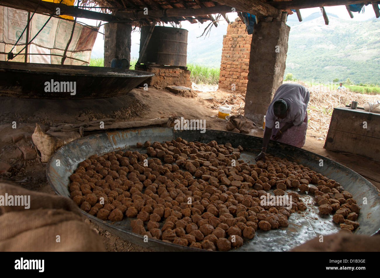 Indian jaggery production, making jaggery balls from sugar cane juice - Stock Image