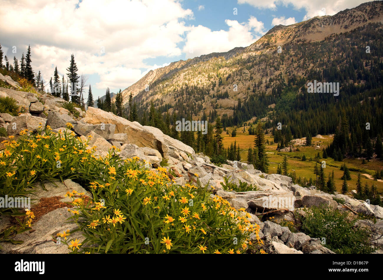 OREGON - The Hurricane Divide rising above the meadows of the East Lostine River Valley in the Eagle Cap Wilderness - Stock Image
