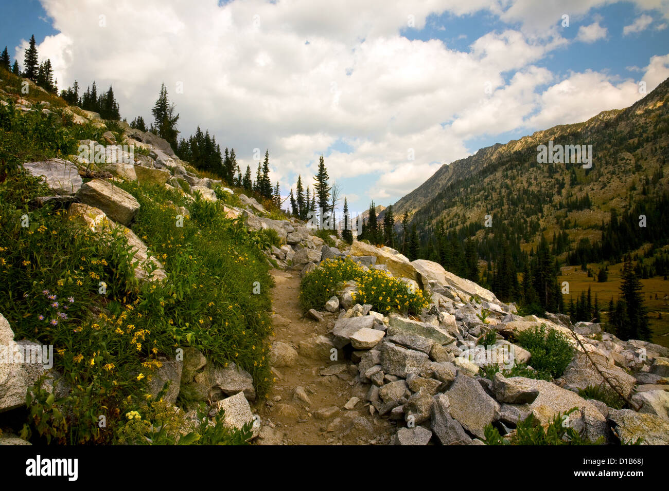 East Lostine Valley Trail traversing above the meadows of the East Lostine River Valley in the Eagle Cap Wilderness - Stock Image