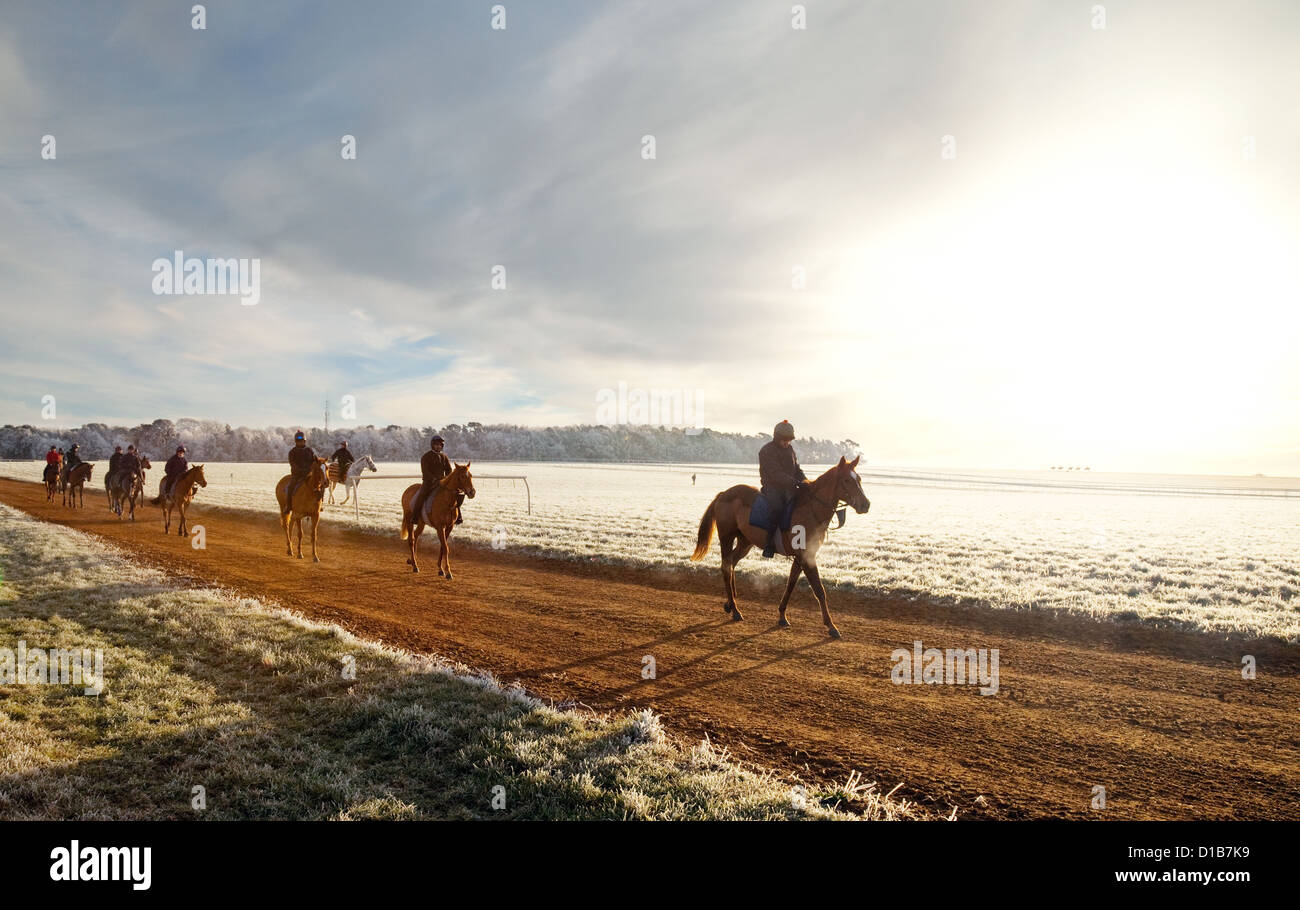 Horses and riders out at sunrise in winter, Warren Hill training ground, Newmarket Suffolk England UK - Stock Image