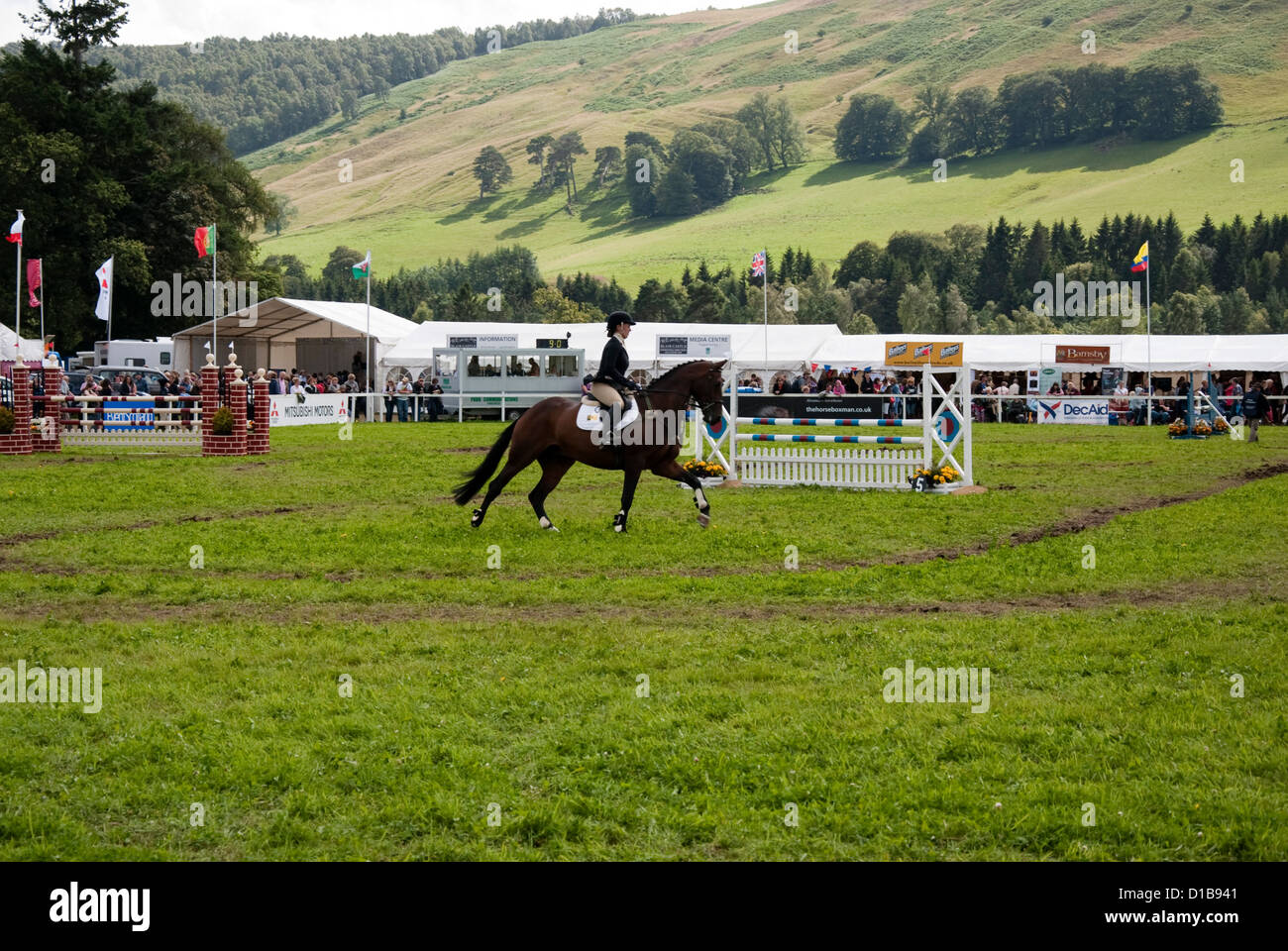 Woman Showjumper on a Chestnut Horse in the Showjumping Arena - Stock Image