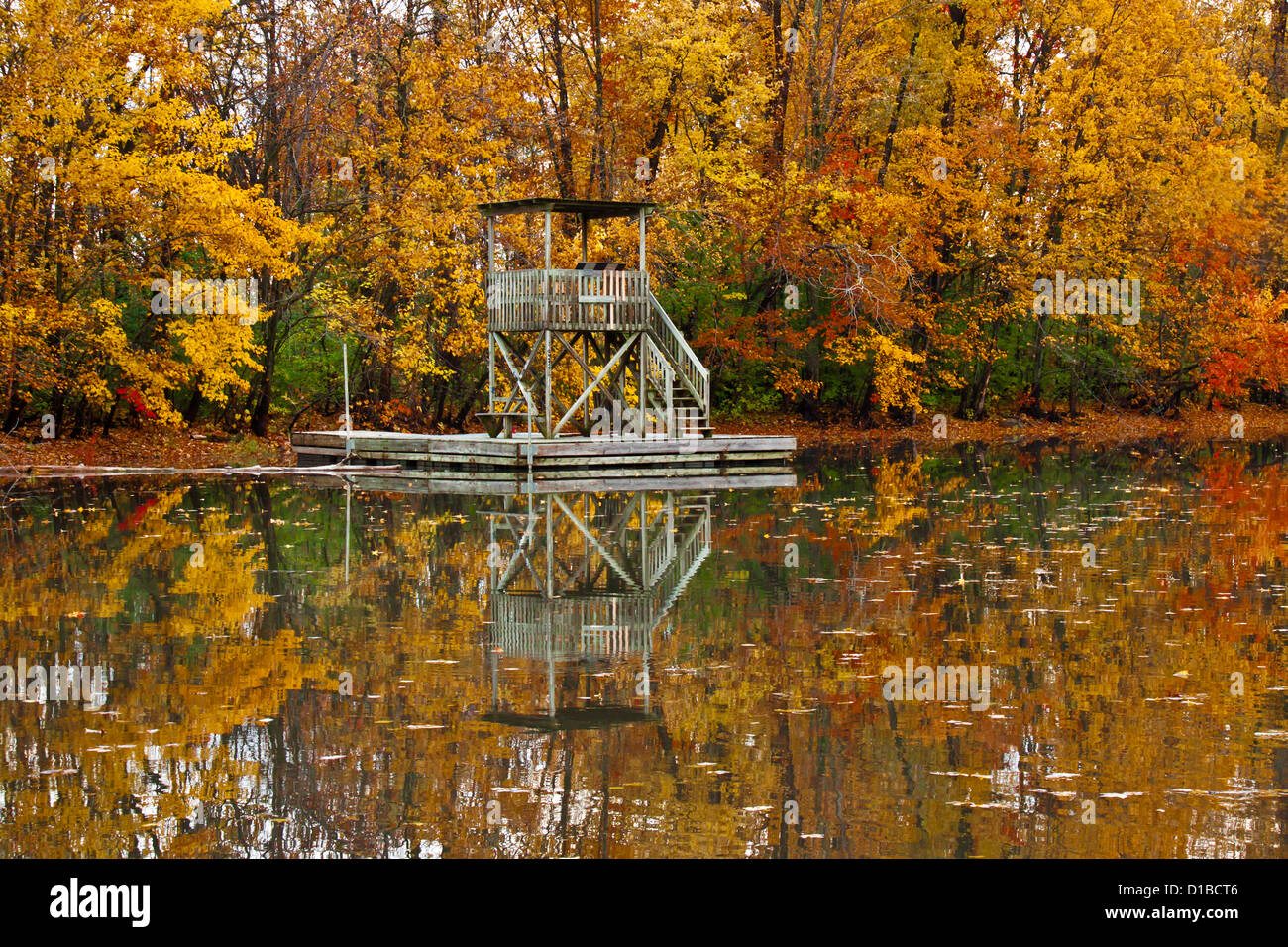 Fall full of colors forest with reflections in the mirror of the water and floating wood tower Stock Photo