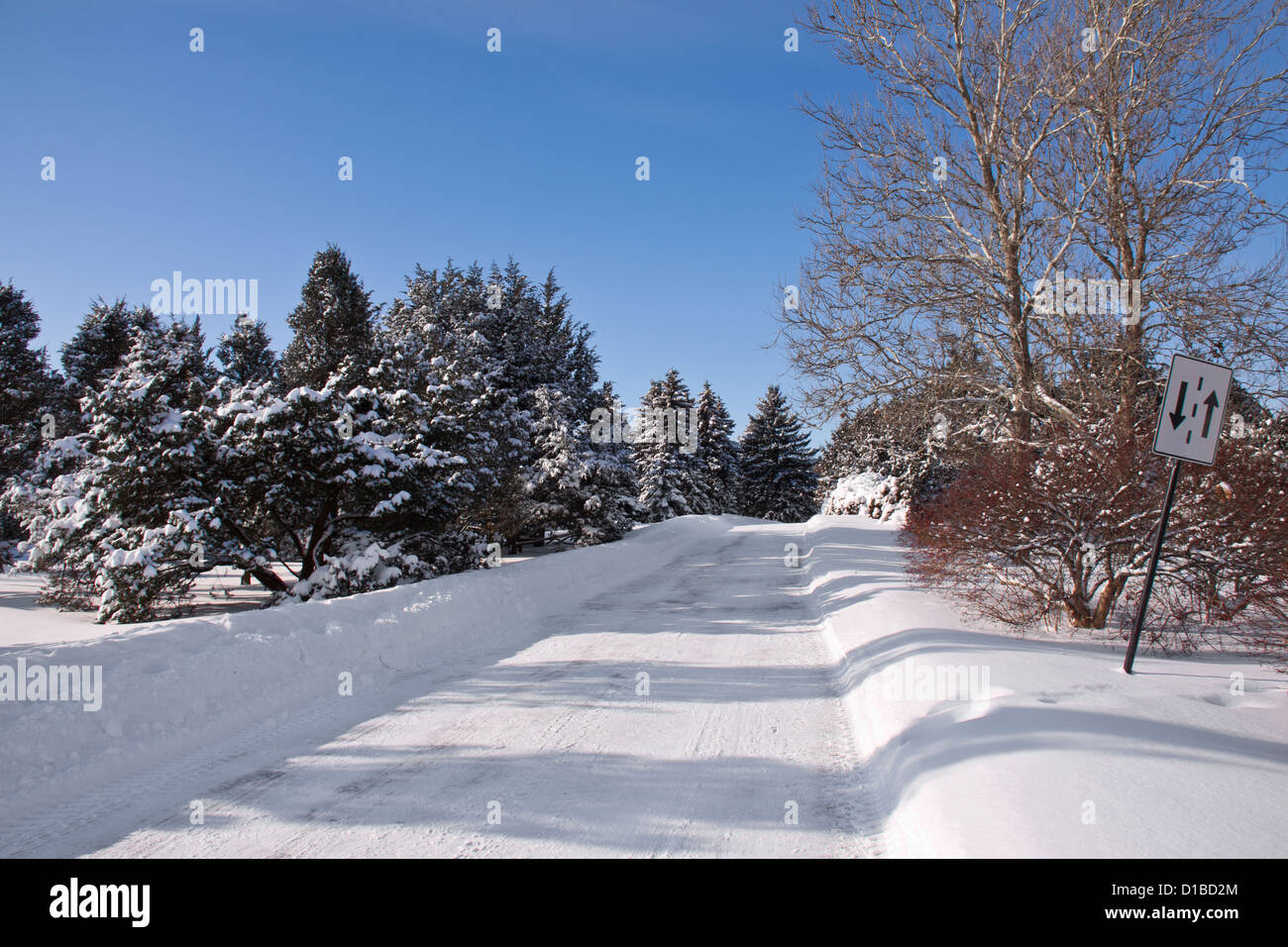 Winter landscape with a lot of snow and a road who cut the forest and a two way traffic sign Stock Photo