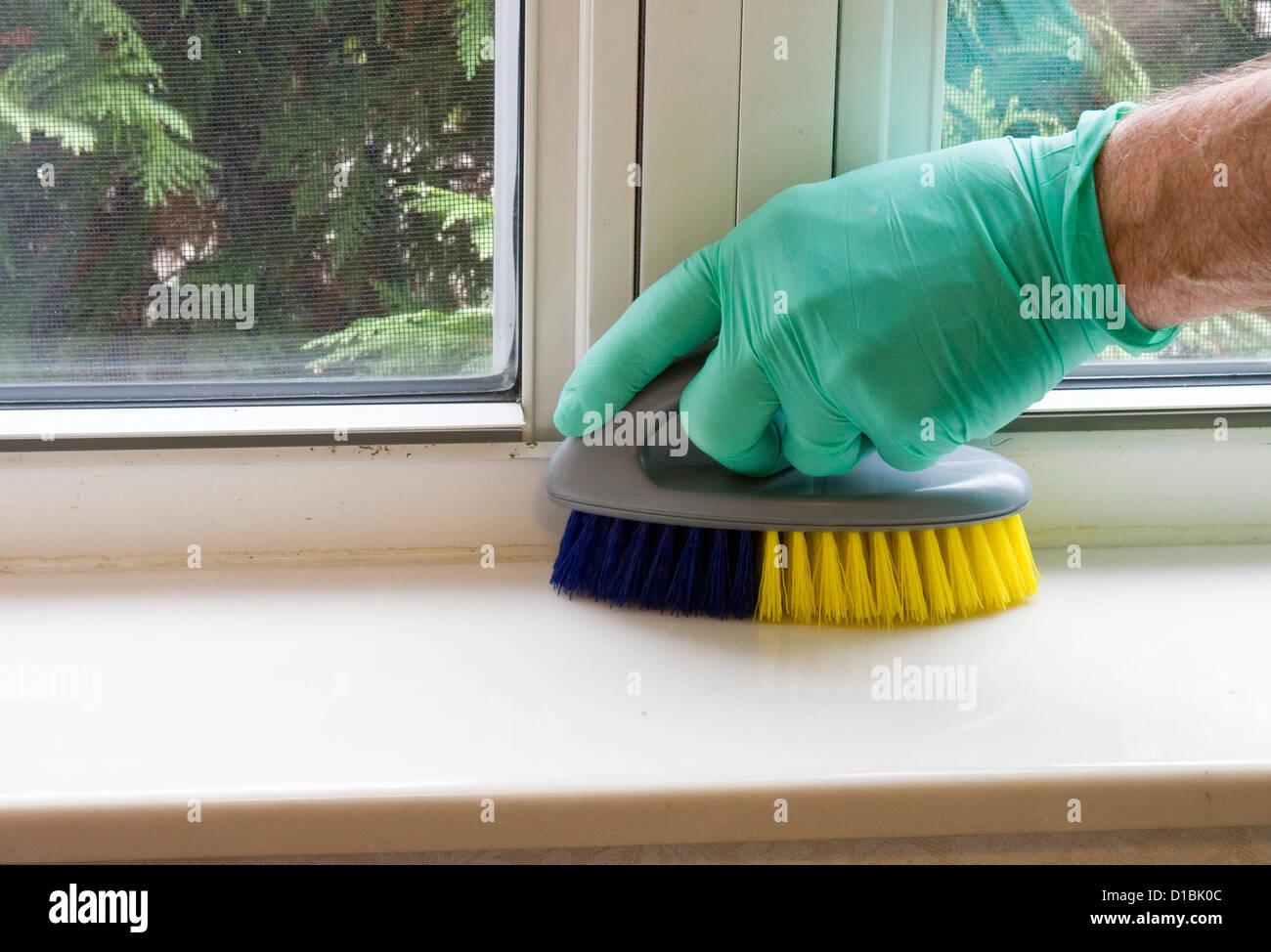 housekeeper with a rubber glove and brush cleaning a window sill - Stock Image