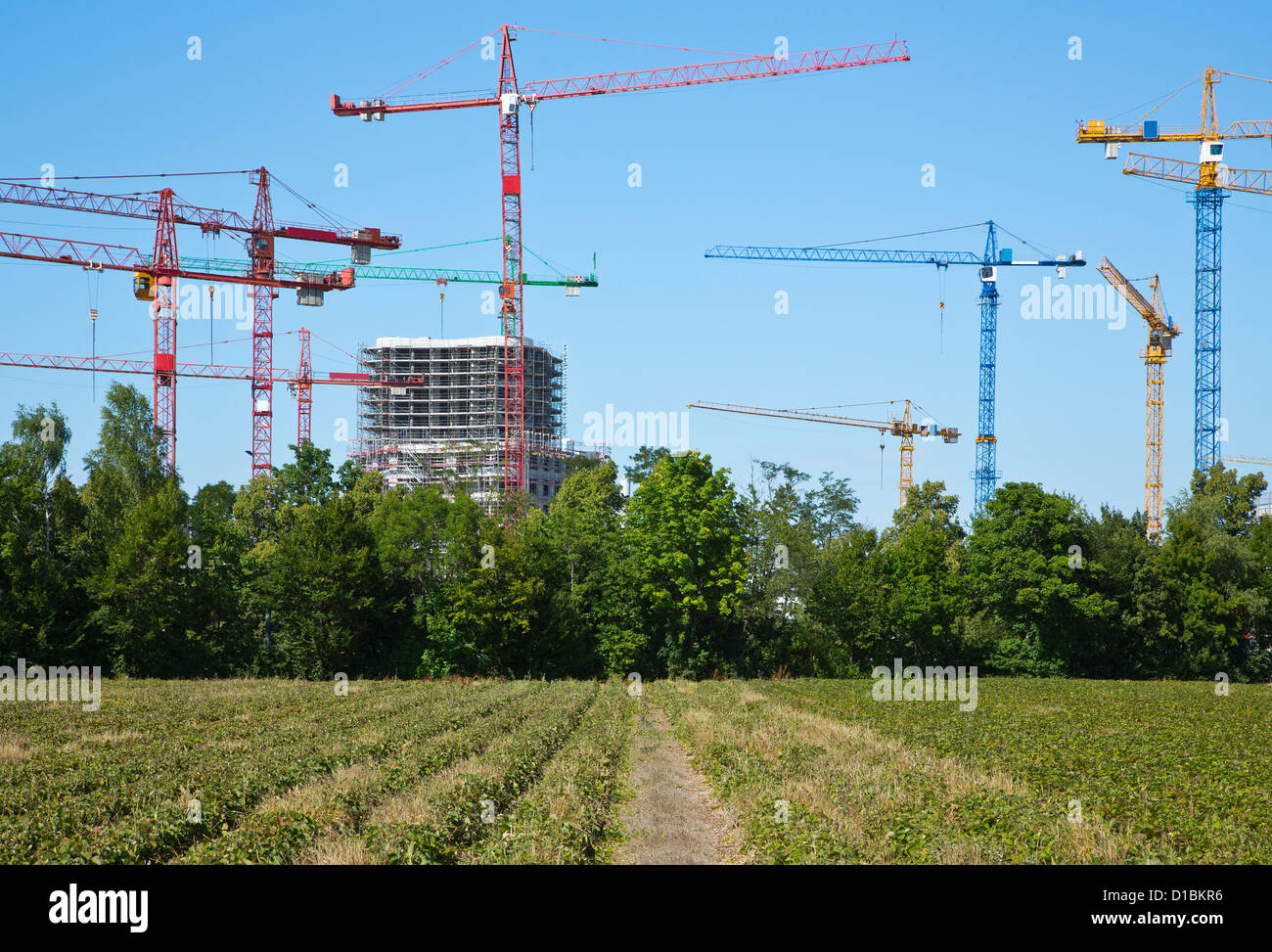Cranes on a construction site near a field - Stock Image