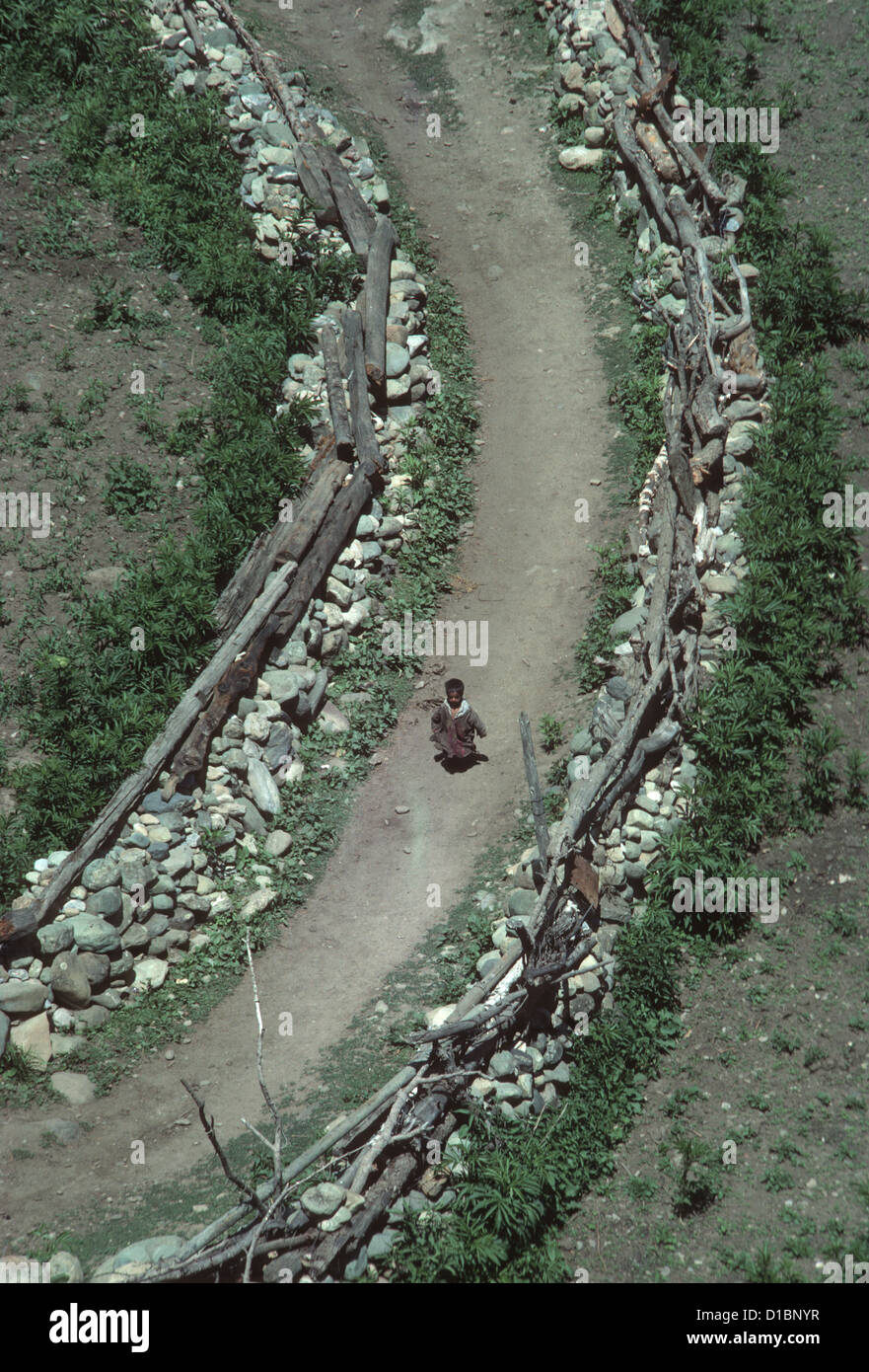 Kashmir, Sind Valley, looking down on a small child running along a village path between rough dry stone walls Stock Photo