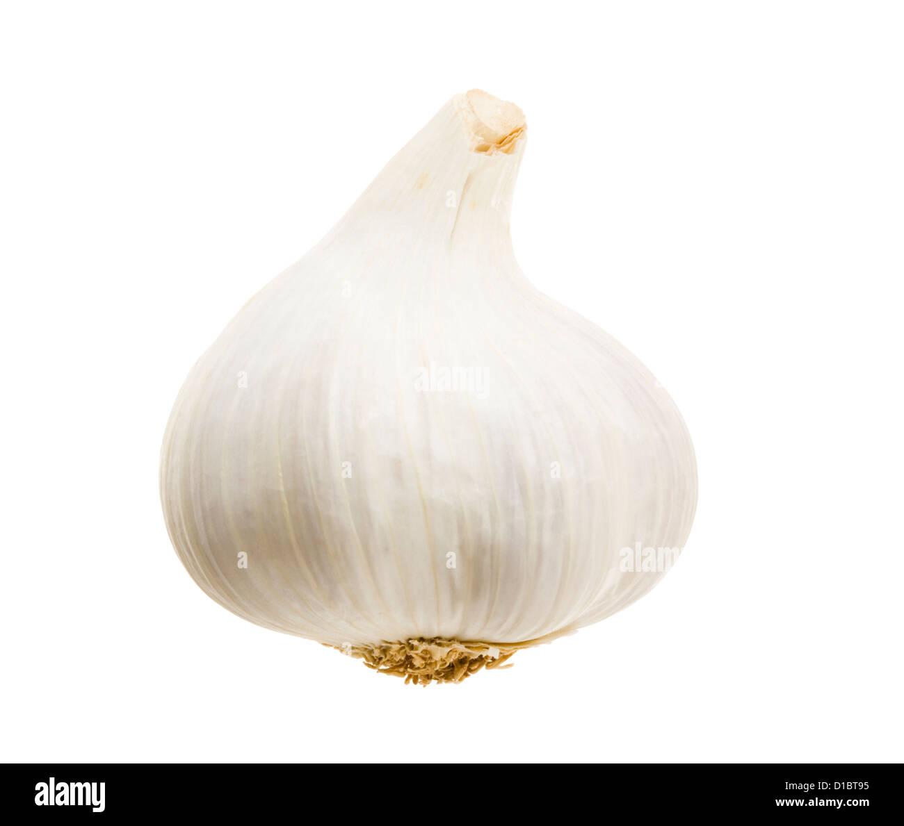 Garlic. - Stock Image