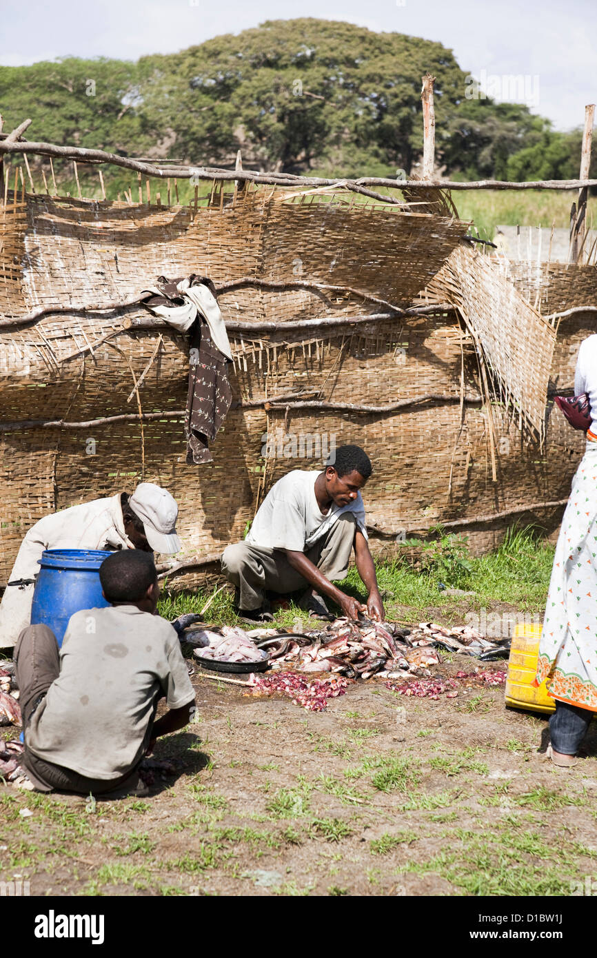 Cleaning and gutting of fish on the fish market in Awasa, Ethiopia. Africa, Ethiopia - Stock Image