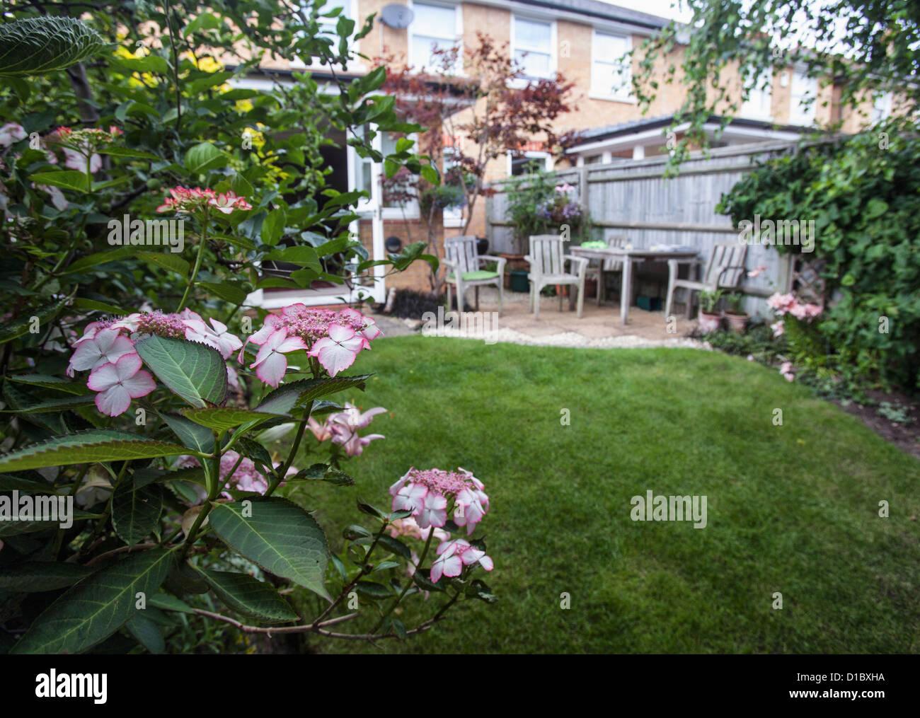 Suburbia - a garden of a terraced house in London, England Stock Photo